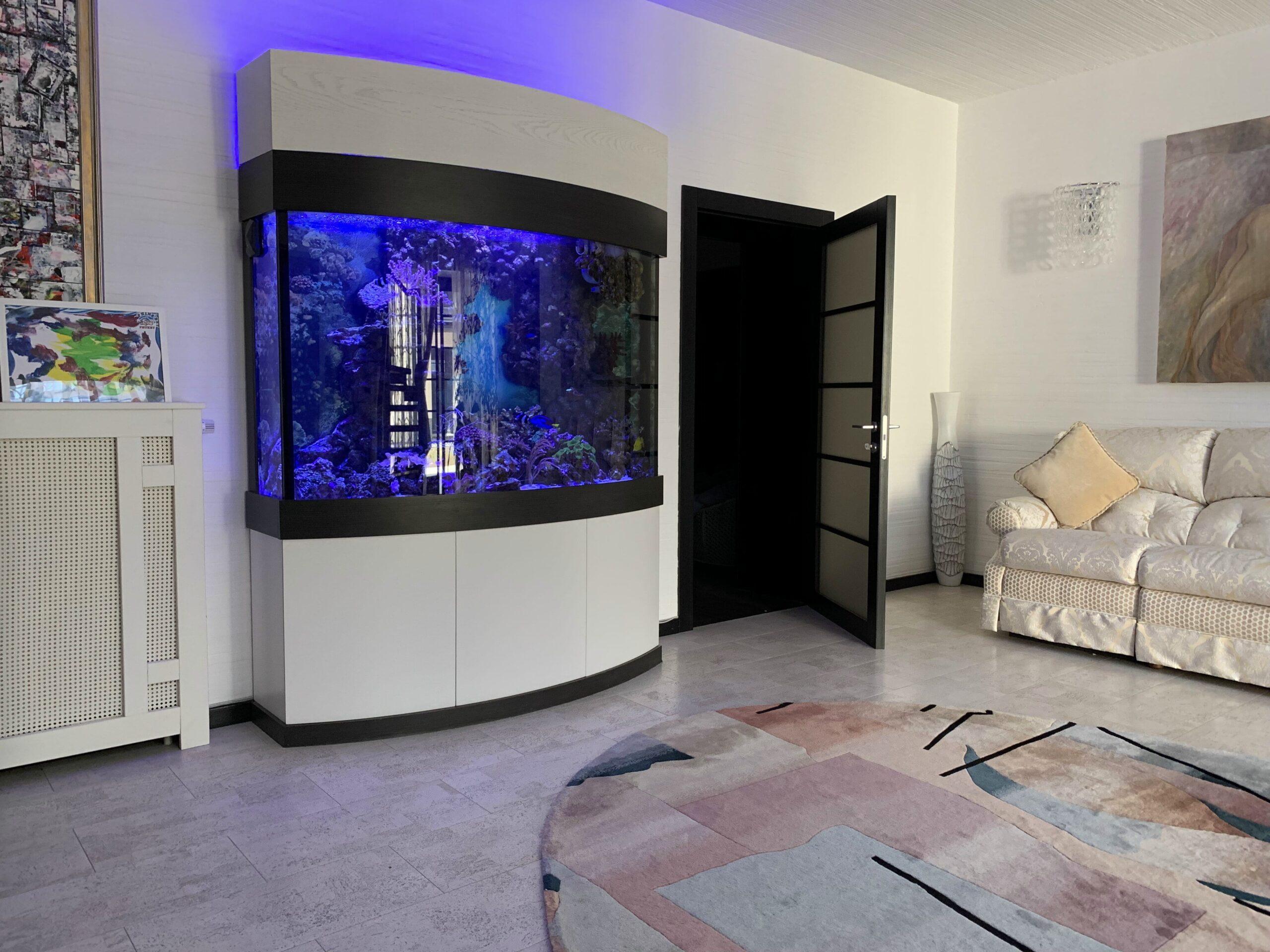 аквариум с выпуклым стеклом